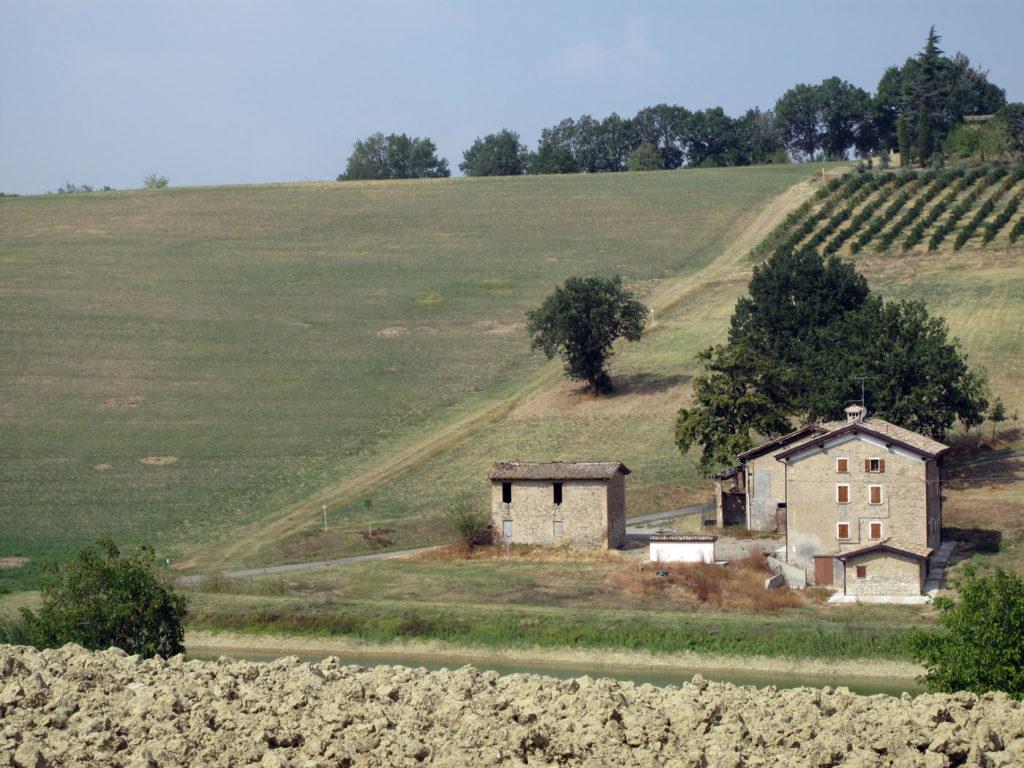 trekking letterario sulle colline di Castelvetro