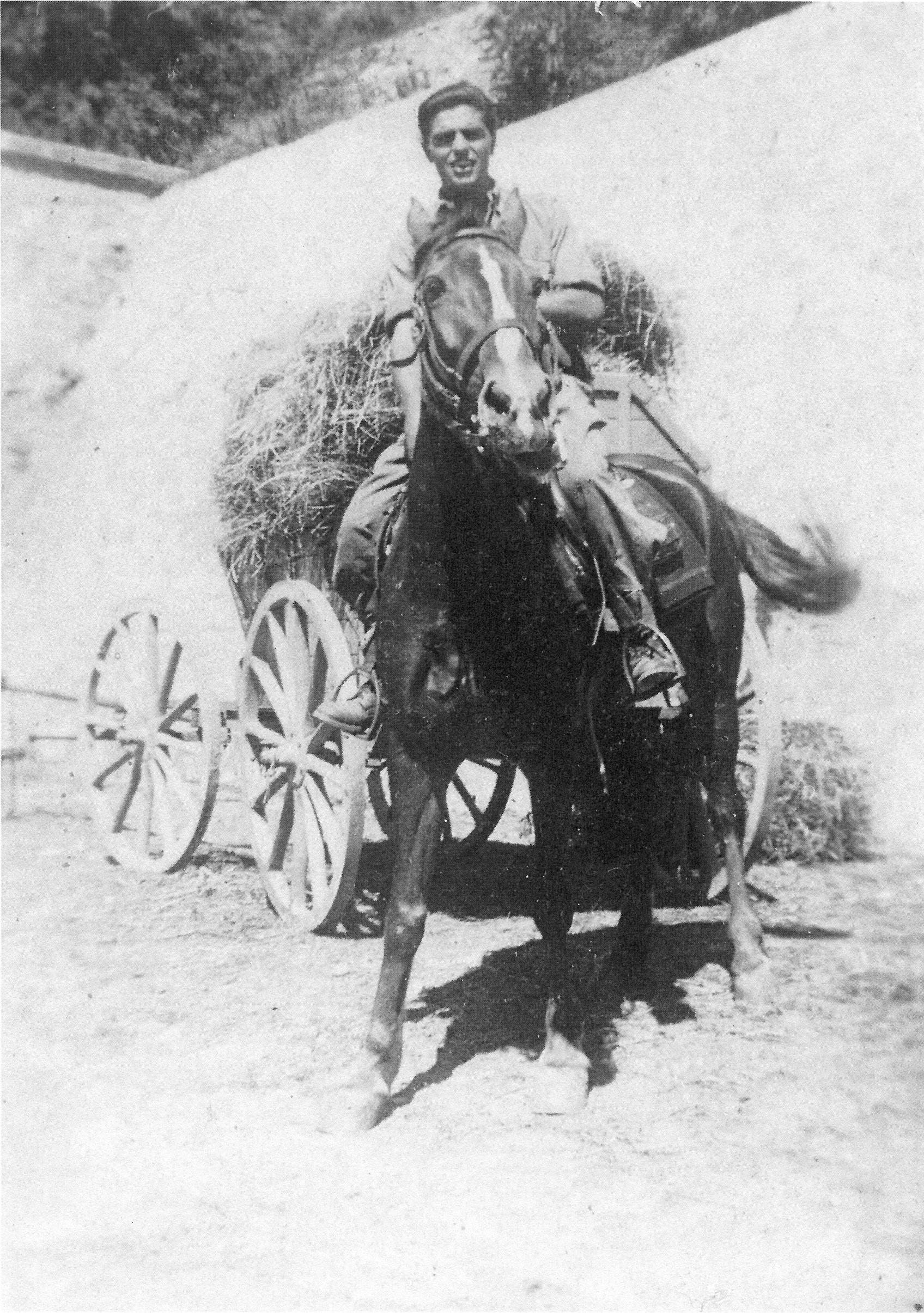 storia di Spilamberto: Il partigiano Sergio Degli Esposti in posa a cavallo. Foto ANPI Spilamberto