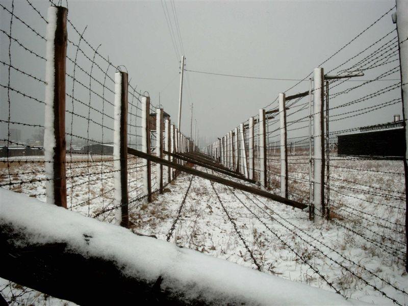 Immagine del lager di Majdanek. Dalle leggi razziali alla Shoah