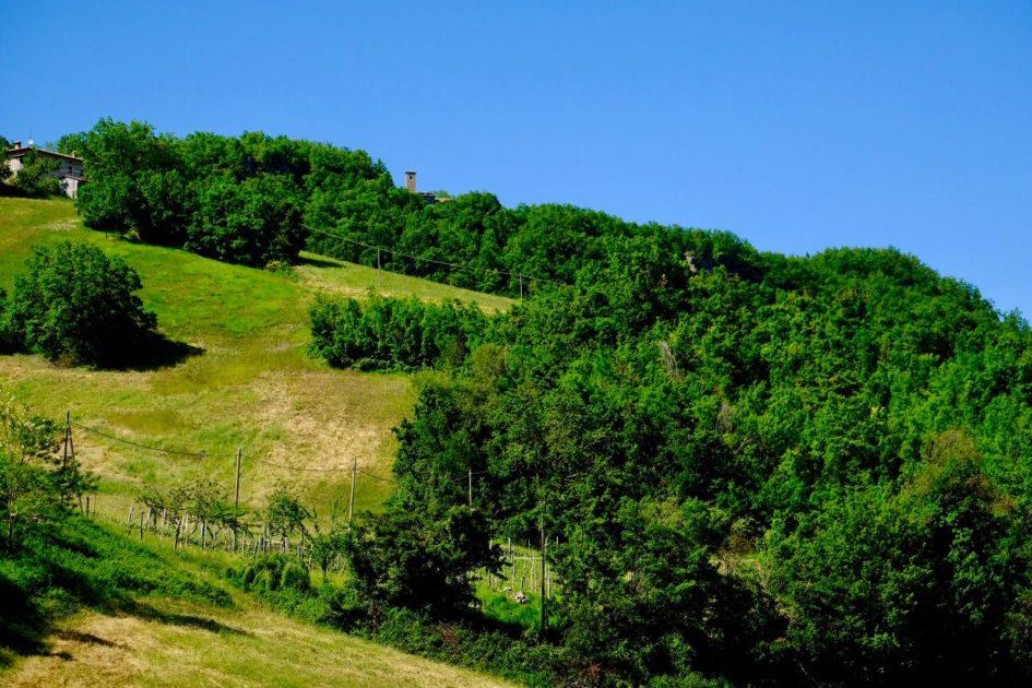 """Sassoguidano. Foto di Fausto Corsini - trekking storico """"I primi passi di Armando"""""""