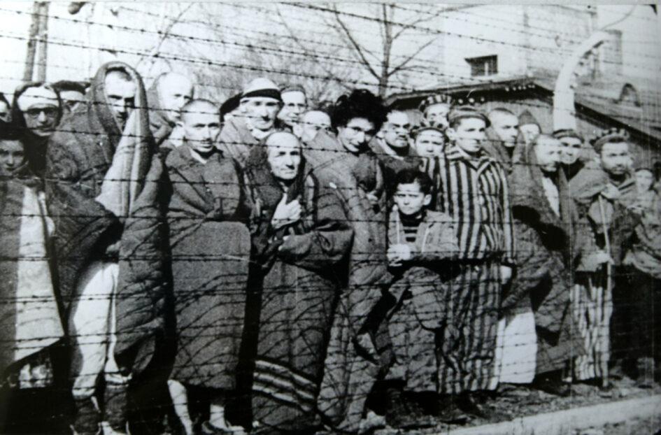 Prigionieri di Auschwitz alla liberazione del campo da parte dei sovietici. Queste persone non fanno le marce della morte